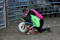 Richland CYBR Bull Fighters 2012