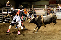 CYBR Finals Bull Fightes 2014